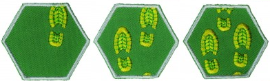 Jaarbadges explorers
